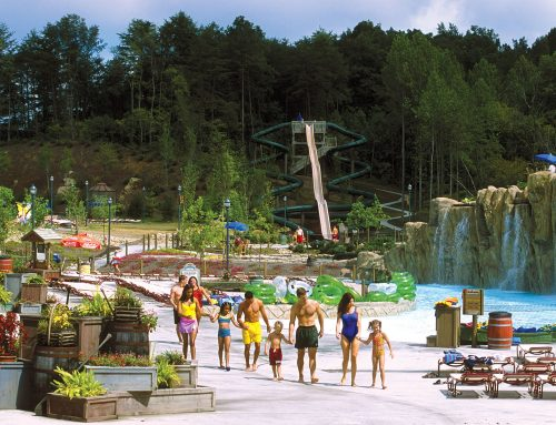 High Health Standards at Dollywood's Splash Country