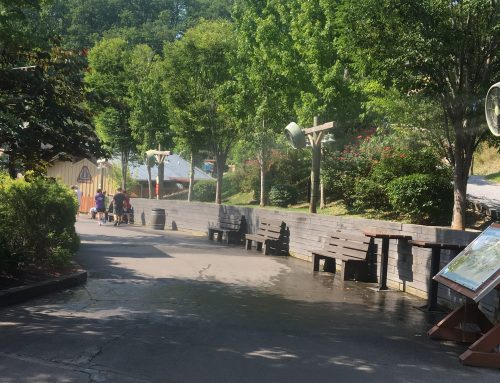 My Tips on Beating the Heat at Dollywood