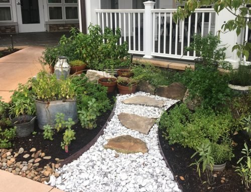 Follow Your Nose to the Resort's Herb Garden