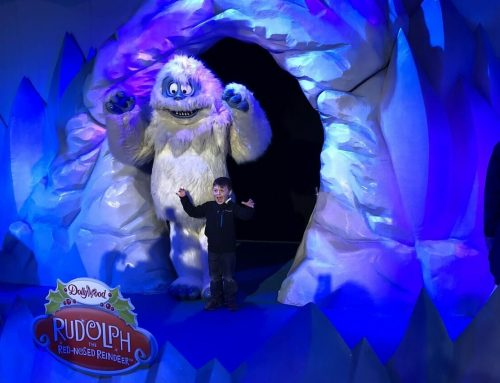 Top Things to Do with Kids During Smoky Mountain Christmas