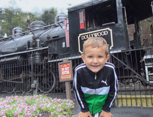 Kindergartener's Perspective: Dollywood Top 5 for 2019
