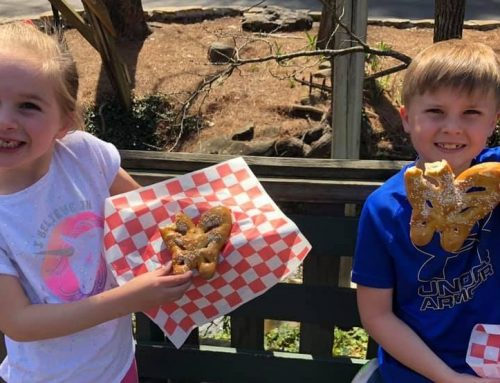 The Best Snacks at Dollywood