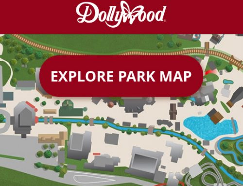 Why Dollywood's Mobile App is a Must!