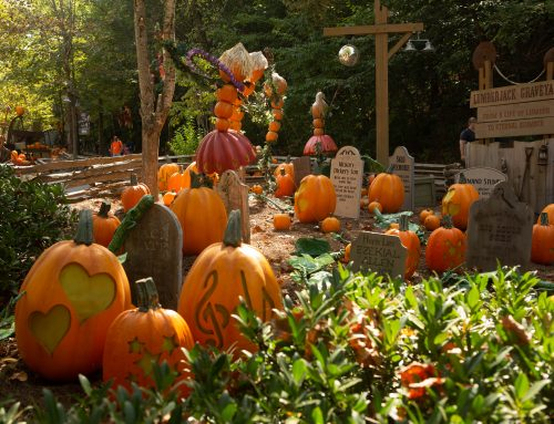 The Best Fall Picture Spots at Dollywood