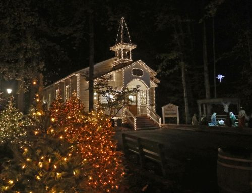Inspirations of Thankfulness at Dollywood