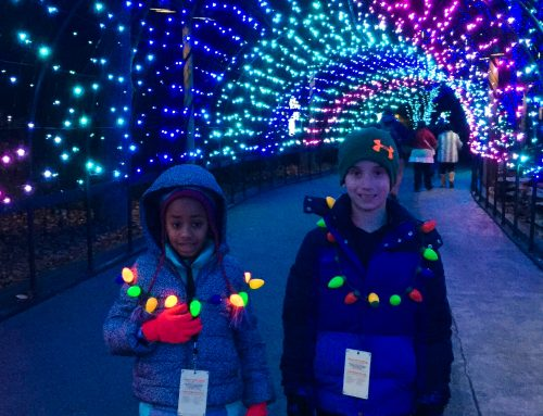 Top Tips for Your Dollywood Christmas Visit