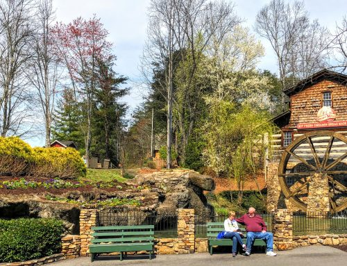 Dollywood by the Numbers