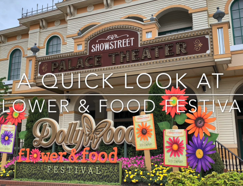 Video: Flower & Food Festival