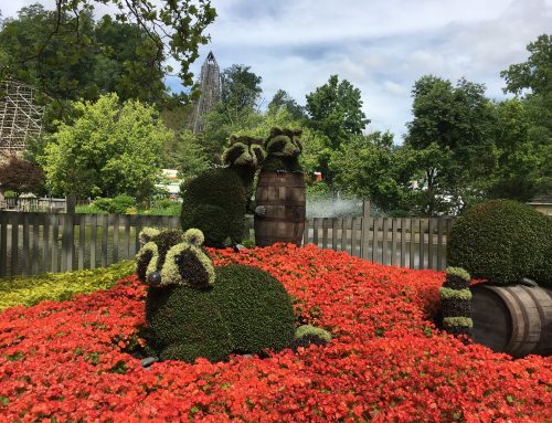 All About the Flowers of Dollywood's Flower & Food Festival