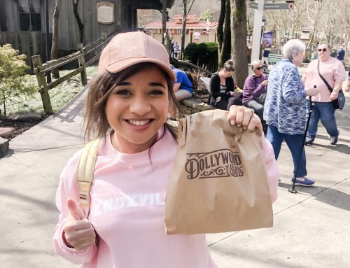 A Day at Dollywood On a $30 Budget