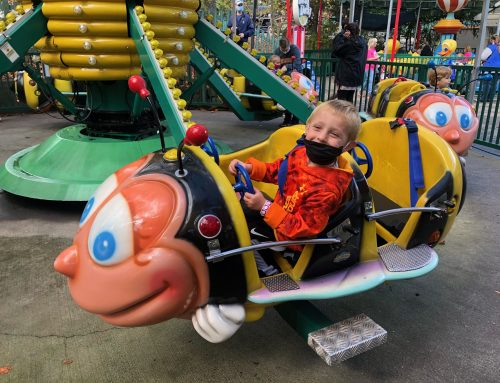 Best Tips for a Dollywood Trip with a Preschooler