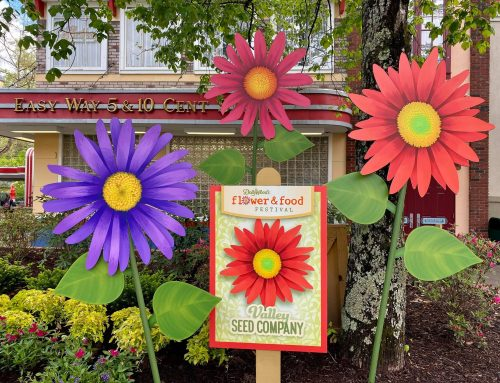 Flower & Food Festival: What's New in 2021