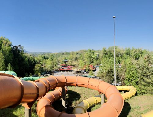 Fun Facts About Dollywood's Splash Country