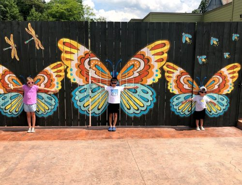 Dollywood Tips with Little Ones in Tow