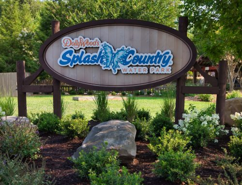 Dollywood's Splash Country in Pictures