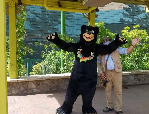 Meet the Characters of Dollywood